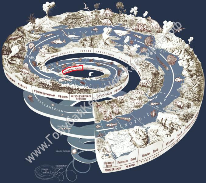 Кембрийский период в истории земли