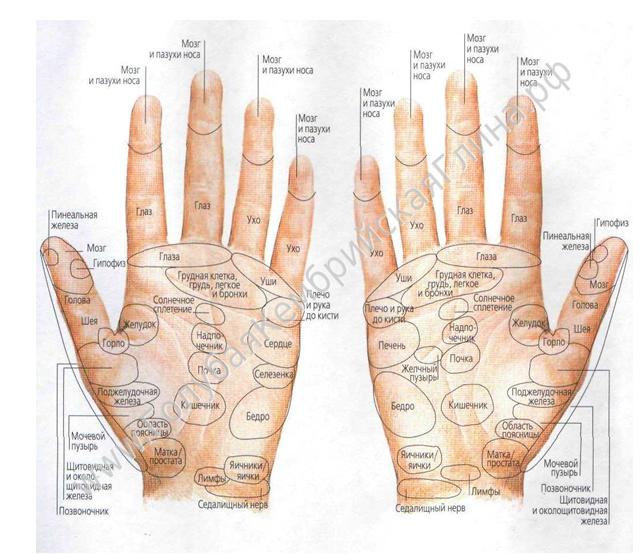 эффективное средство для суставов рук в руки